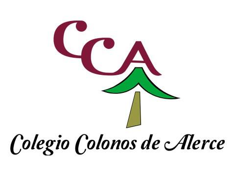Colegio Colonos - WDesign - Diseño Web Profesional