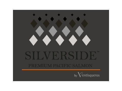 Silver Side - WDesign - Diseño Web Profesional