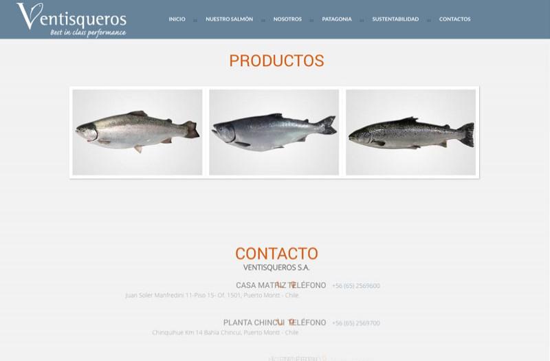 Ventisqueros - WDesign - Diseño Web Profesional